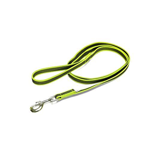 Julius-K9 216GM-NE-S2 Color & Gray, gumierte Leine, neon-grau, 20 mm x 2 m, mit Schlaufe, max für 50 kg Hunde