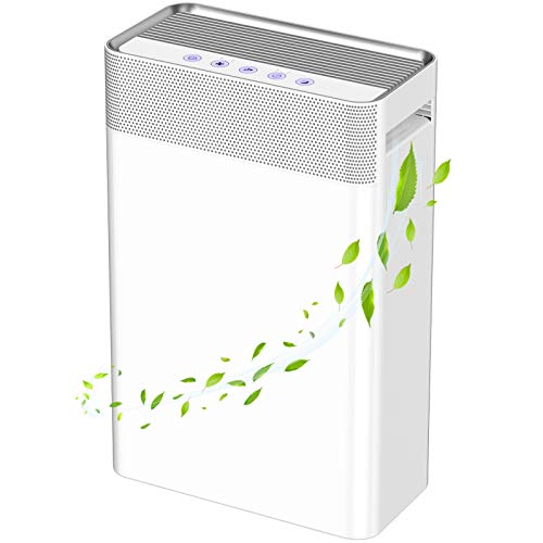 Purificatore d'Aria con Filtro HEPA, KJ203F-142 Ionizzatore 5 IN 1 45W 100% Senza Ozone&Anione Filtrazione 99,97% per Allergici, Formaldeide/Fumo/Polvere/Muffa, Casa, Ufficio CRD 230m³/h-Duomishu