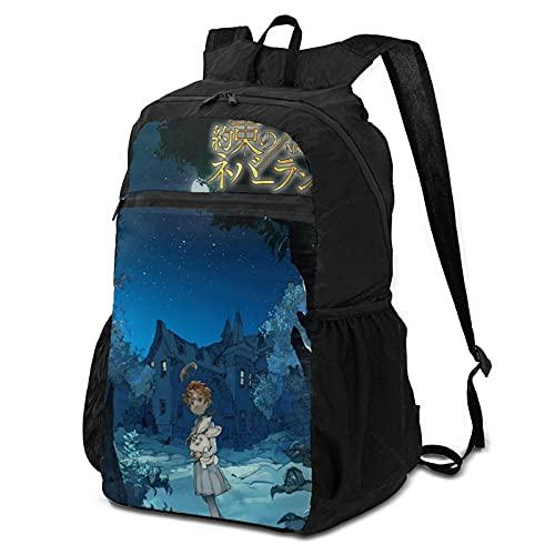 Daybacks,Funda para La Lluvia The Promised Neverland Emma Schoolbag, Bolsa De Herramientas Transparente para Cámara para Correr En La Playa,38x24x17cm
