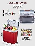 Zoom IMG-2 frigo portatile termoelettrico ac dc