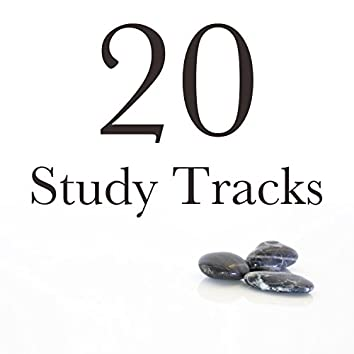 20 Study Tracks - the Perfect Backdrop to Studying or Working, Concentration Music