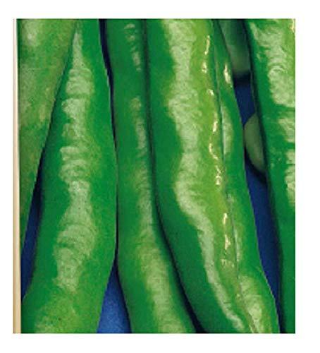 1 kg - zaden - aguadulce bean met zeer lange groene zwaardpod - vicia faba - in originele verpakking - gemaakt in italië - tuinbonen
