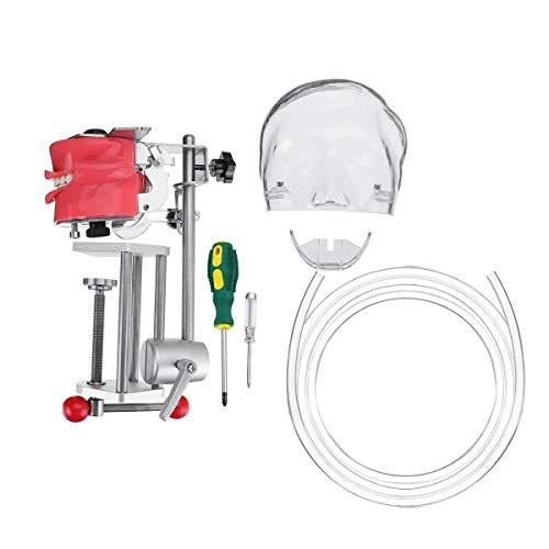 Ji Yun Phantomkopf Zahn-Zahn-Modell Trainingsbank Werkzeuge Dental Simulator Manikin Lab Instrumente Geräte