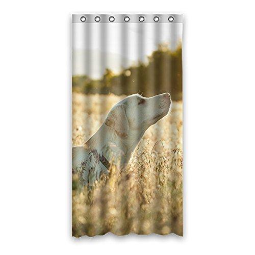 Sobald Young H& & der Rasen Wasserdicht Polyester-Badezimmer-Dusche Vorhang Badezimmer Deko 91,4x 182,9cm (90x 183cm), Polyester, E, 36