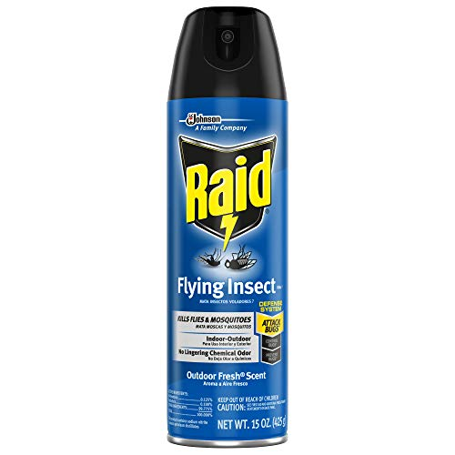 Raid Flying Insect Killer Insecticide Spray - 15 oz