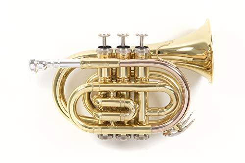 Roy Benson Rb701000 Tromba Pocket in Sib Pt-101, Laccato, Astuccio Rettangolare