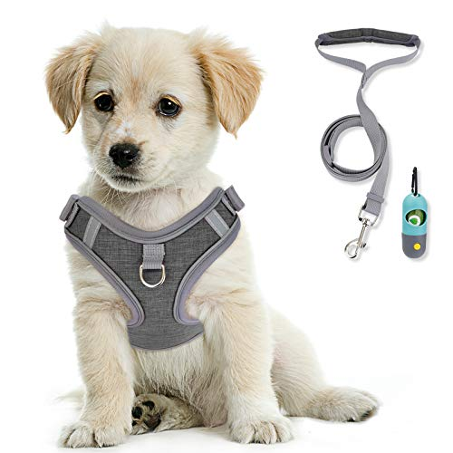 KITTYWOO Dog Vest Harness Leash Set No Pull Dog Vest Harness Puppy Padded Mesh Vest with Leash Easy Put On & Take Off Vest Harness for Small to Large Breed Pets (Grey, S)
