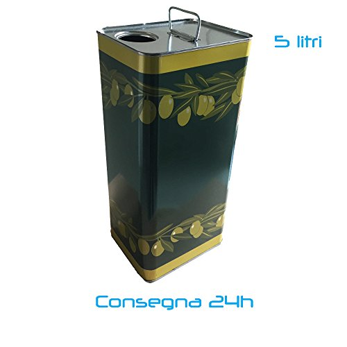 10x Lattina latta in metallo per olio contenitore 5lt con tappo e maniglia