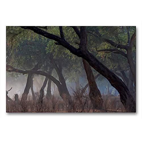 Premium Textil-Leinwand 90 x 60 cm Quer-Format Morgenstimmung in Mana pools | Wandbild, HD-Bild auf Keilrahmen, Fertigbild auf hochwertigem Vlies, Leinwanddruck von Gerald Wolf