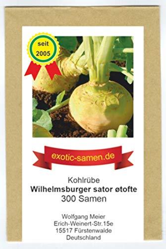 Steckrübe - Kohlrübe - für Speisezwecke - Wilhelmsburger sator øtofte - 300 Samen