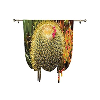oobon Cactus Decor Roman Curtain,Photo of Cactus Plant Flower with Spike Botanic Desert Garden Floral Image Thermal Insulated Blackout Window Curtain,31x47 Inch,for Home Windows Green and