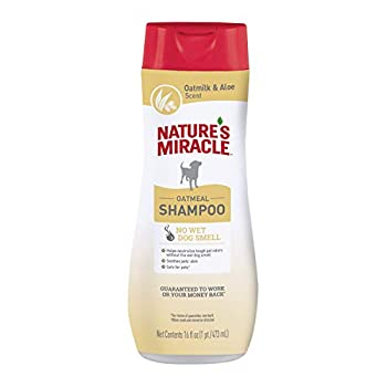 Nature s Miracle Oatmeal Shampoo for Dogs 16 Ounces Oatmilk and Aloe Scent