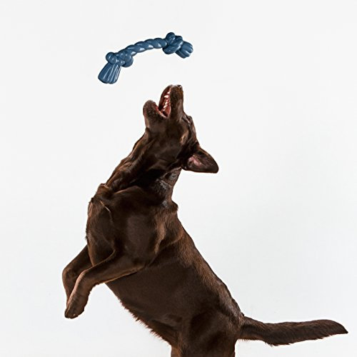 Real Simple Pet Dog Toy Rubber Twist Rope  Large Blue