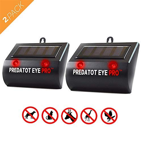 Aspectek Solar Powered Predator Eye Pro Night Wild Animal Repeller 2 Pack (Black 00B)