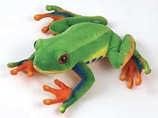 Red Eye Tree Frog 8