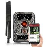 SECACAM Raptor Mobile - 4G LTE Wildkamera 52 Grad Winkel Handyübertragung mit SIM Bewegungsmelder Nachtsicht Wildtierkamera Tierkamera