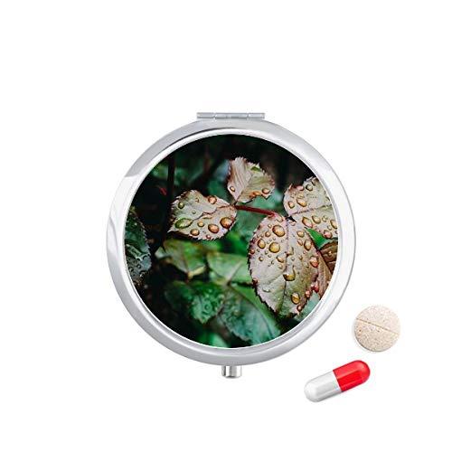 DIYthinker Dauwdruppel Leaf Plant Natuur Foto Reizen Pocket Pill Case Medicine Drug Opbergdoos Dispenser Spiegel Gift
