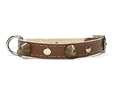 Superpipapo Hunde-Halsband, Handmade Braun Leder Design mit Nieten, Robuste Ausgefallene Qualität für Welpen, Chihuahuas und Kleine Hunde, 25 cm XXXS: Halsumfang 15-20 cm, Breit 13mm