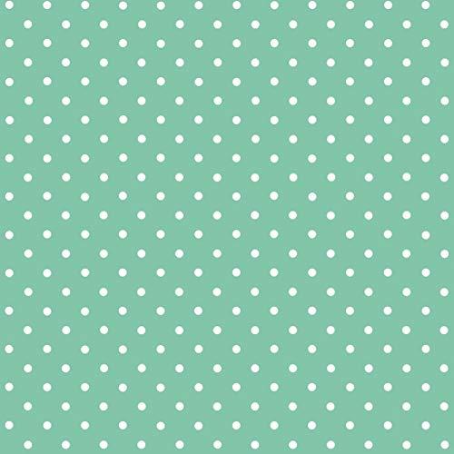 d-c-fix Klebefolie Bastelfolie Dekorationsfolie Designfolie Punkte Mint 45 x 200 cm - 6 0648 - Dekorieren Basteln Schmücken