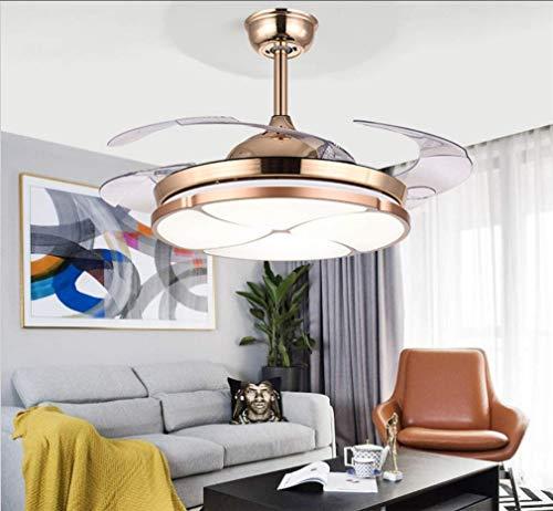 FGH Ventilador Techo Simple Light, Ventilador Techo Dormitorio Regulable Luz,Reversible Rotación Puede Ajustar El Tiempo Reducción Ruido Motor Ventilador Techo Ajustable Lámparas