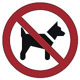 Cartel de plástico prohibido llevar a perros de 20 cm de diámetro (resistente a la intemperie).