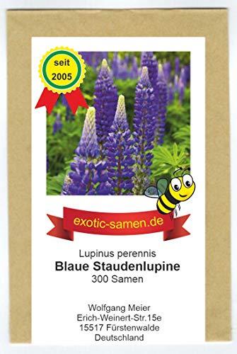 Wilde Lupine - Stauden-Lupine - ausdauernd - Bienenweide - Bauerngarten - 300 Samen