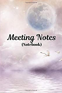 Meeting Notes: (Notebook)