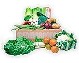 Caja de verdura de temporada 8kg