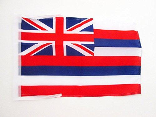 AZ FLAG Flagge Hawaii 45x30cm mit Kordel - HAWAIISCHE Bundesstaat Fahne 30 x 45 cm - flaggen Top Qualität