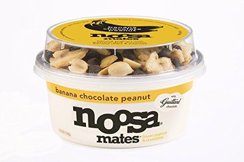Noosa Yogurt Mates 5.5 oz--Pack of 8 (Chocolate Banana)