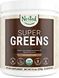 Best Green Superfood Powders - Super Greens Chocolate | #1 Green Vegetable Superfood Review