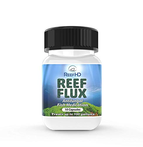 ReefHD Reef Flux Anti-Fungal Treatment (100 gal)
