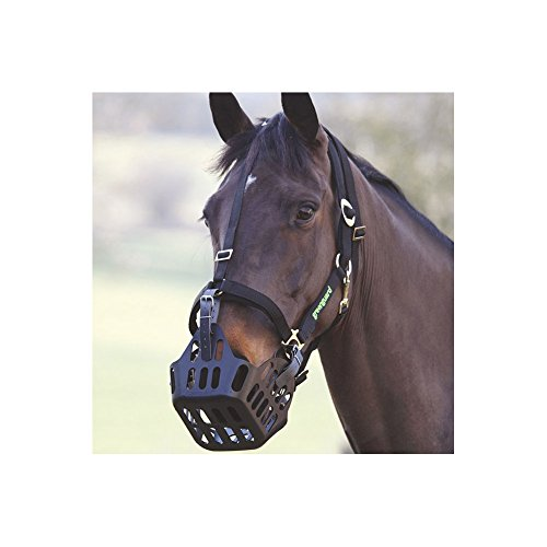Shires Greenguard Head Collar Cob Black