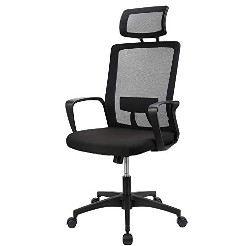 Ergousit Home Office Chair Ergonomic Desk Chair Mesh Computer Chair with Lumbar Support Armrest Executive Rolling Swivel Adjustable High Back Task Chair Load Bearing 350 LBS(Black)
