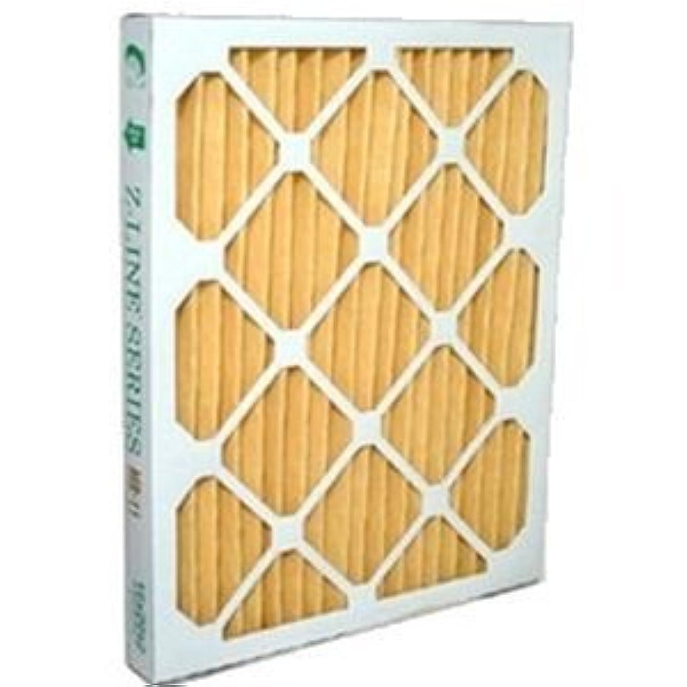 20x20x1 Merv 11 Furnace Filter (12 Pack)