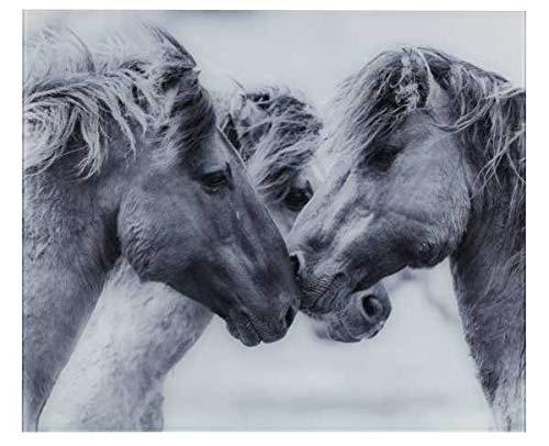 WENKO Glasrückwand Horses, Spritzschutz für Herd oder Spüle, Wandblende mit Pferde-Motiv, Gehärtetes Glas, 60 x 50 cm, grau