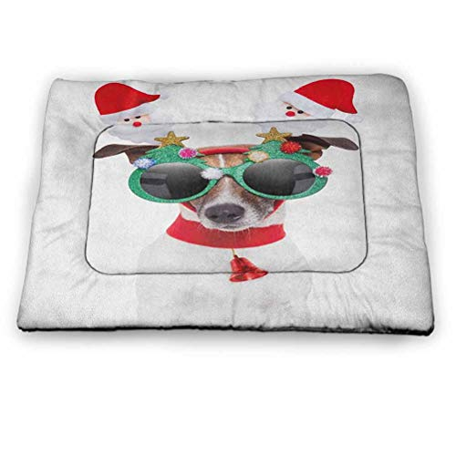 PET PALS PUPPY DOG /& KENNEL BOX Jack Russell Terrier Vivid Arts