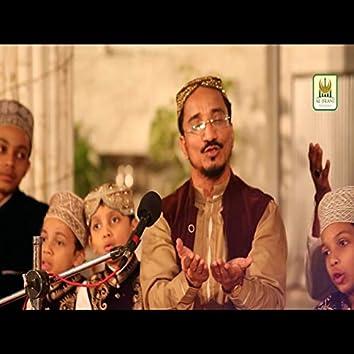 HaqFareed Sabir De Peer