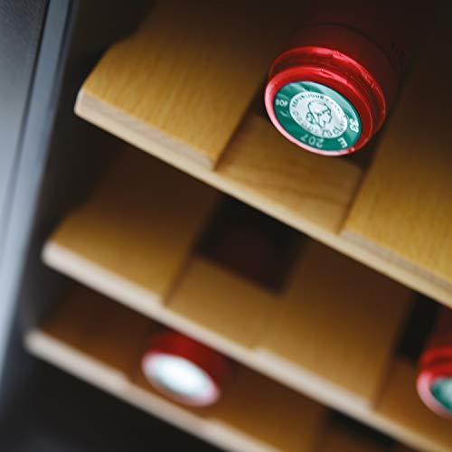 H.Koenig Cave à vin 8 bouteilles de conservation AGE8WV 25L, Professionnelle Inox, Wine Cellar Réfrigérante Thermo Electrique multi température 8°C-18°C, Silencieuse, Eclairage intérieur, 3 Etagères
