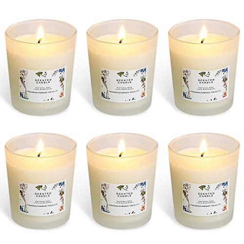 YIHANG Scented Candle Gift Set – (6 x 2.2 Oz/65g) - Aromatherapy Set of Fragrance Soy Wax – for Stress Relief and Relaxation