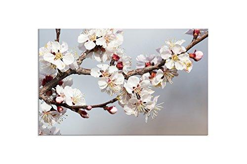deinebilder24 - Bild auf Leinwand - 80 x 120 cm - Zweig Rosenblüte, Apfelblüte
