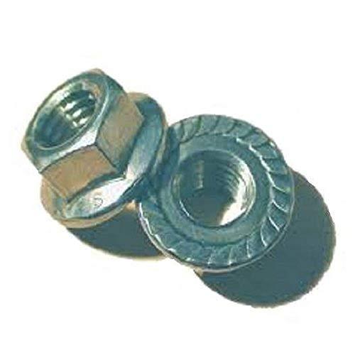 316 Stainless Steel Hex Flange Nut, Plain Finish, Self-Locking Serrated Flange, ASME B18.2.2, 5/16
