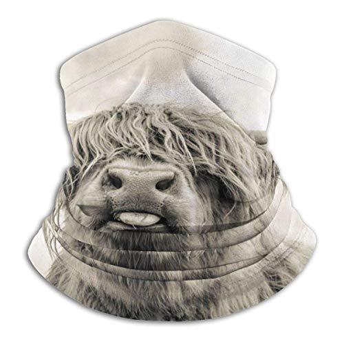 Calentador De Polaina De Cuello Divertida Highland Cow Runni
