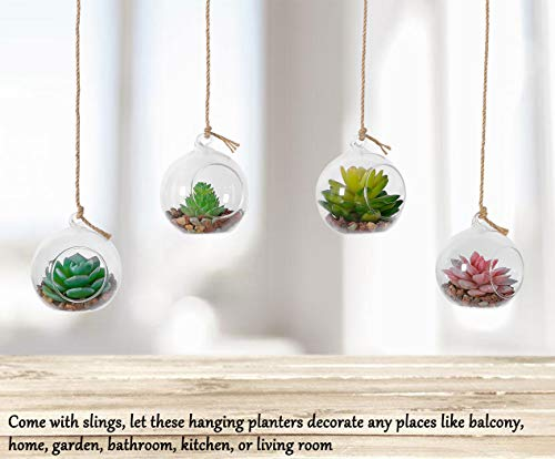 Hanging Glass Globe Air Planter Terrarium Vase with 39 inch Sling
