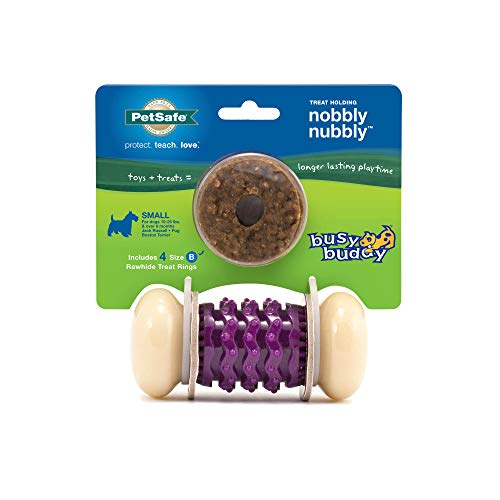 PetSafe Busy Buddy Nobbly Nubbly Treat Holding Dog Toy – Strong Chewers – Small