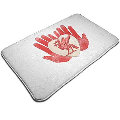 """Joy Wholesale Liverpool Doormat 19.5"""" * 31.5"""" Non-Slip Stain Fade Resistant Area Rugs Door Mat Outdoor Indoor Mat"""