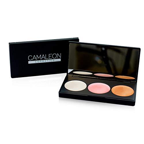 Paleta de maquillaje natural CAMALEON COSMETICS