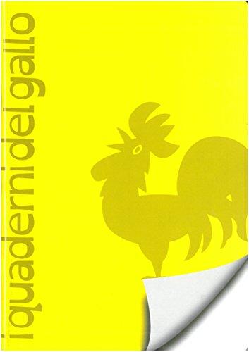I quaderni del gallo. Linea 100. Quaderni speciali per disgrafia e dislessia