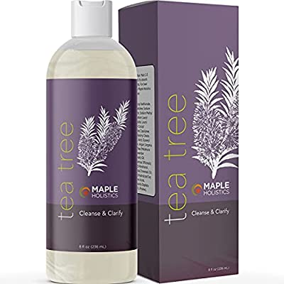 Pure Tea Tree Oil Shampoo - Natural Essential Oil Shampoo - Sulfate Free Hydrating Cleanser