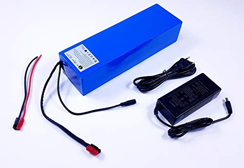 TZIPower Batería de 36 V 20 Ah, PVC, para Bicicleta eléctrica, batería de Ion de Litio